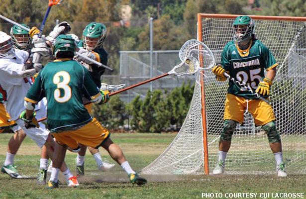 Cody Cook, Concordia lacrosse